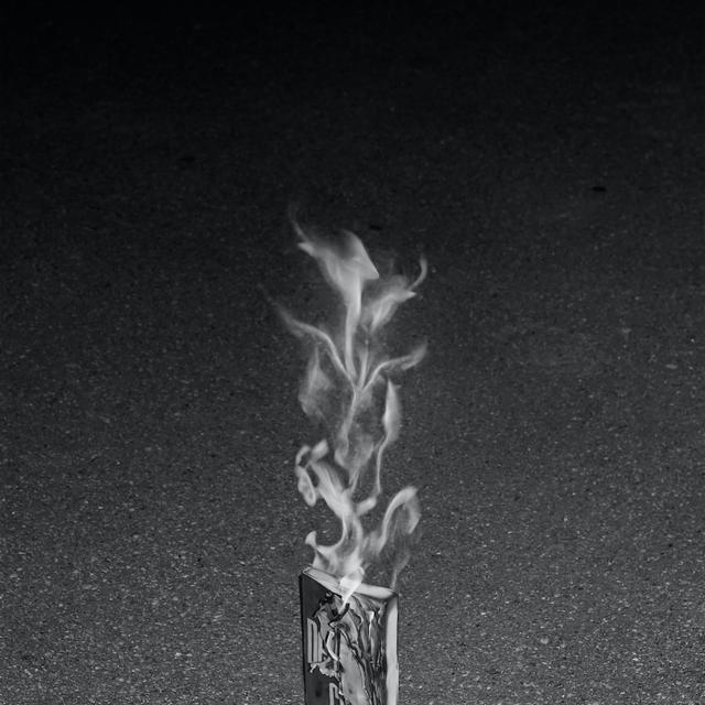 14 托马斯·布拉西,选自《自由》系列,2012-2017